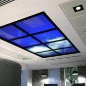 Skylight Projection
