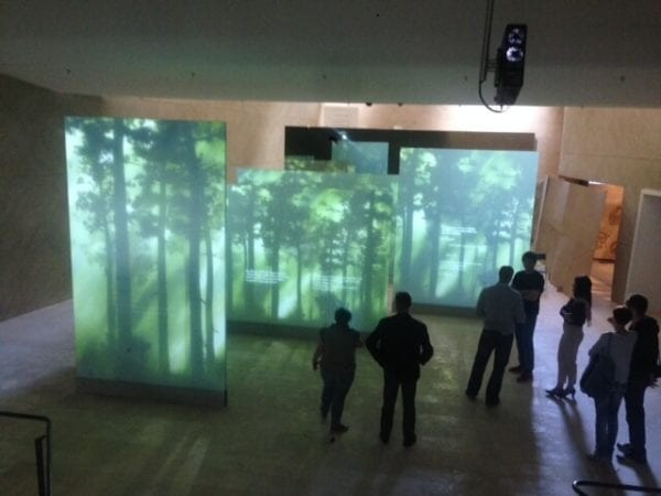 360 176 Dual Image Projection Film
