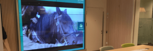 Interactive Video Wall at Lloyds Bank